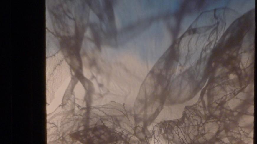 Lucia Ronchetti: Studio in forma di rosa - shadow figures by Adelheid Kreisz