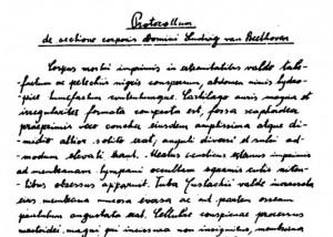 Lucia Ronchetti: Cartilago auris magna et irregulariter formata