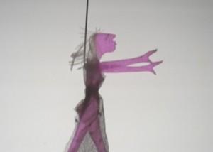 Lucia Ronchetti: Studio in forma di rosa