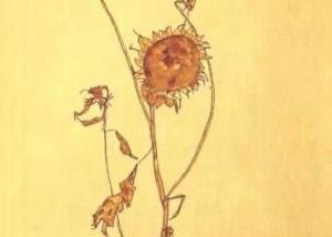 Lucia Ronchetti: Fiore di campo